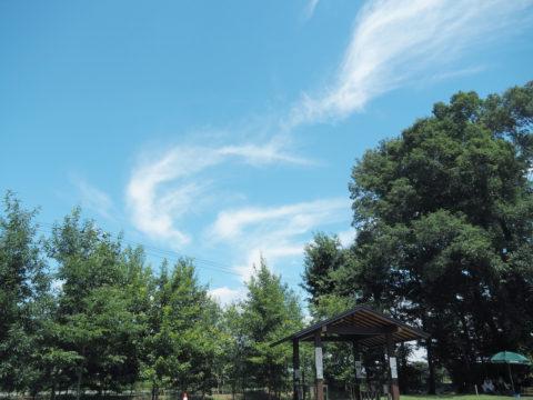 三王山ふれあい公園でBBQ
