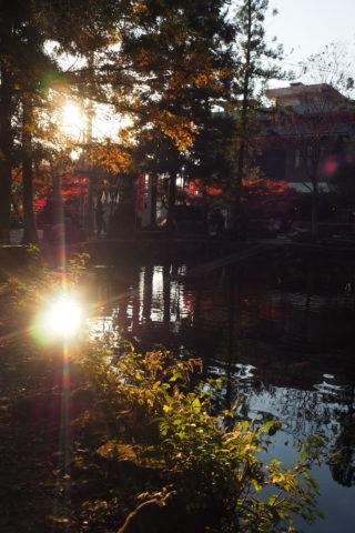 出流原弁財池に反射する太陽