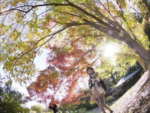 THE 秋のポートレート
