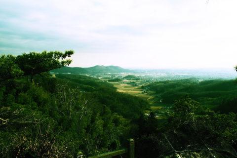 唐沢山からの景色