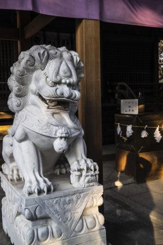 唐沢山神社の狛犬(左)