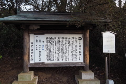 唐沢山神社 史跡に隠れる猫