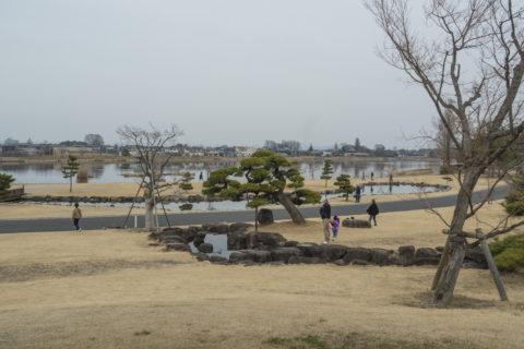 つつじが岡公園から見える城沼