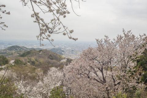 神社に近い駐車場から見た景色