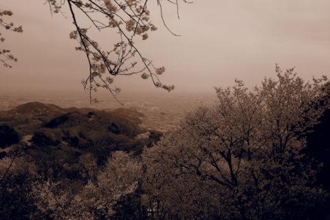 神社に近い駐車場から見たセピアの景色