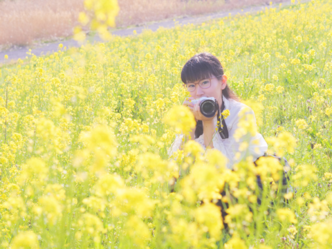 菜の花畑と私