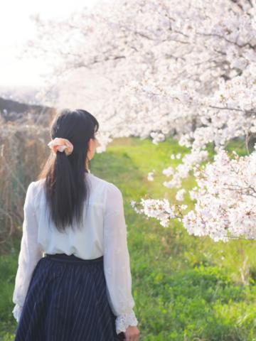 桜と後ろ姿