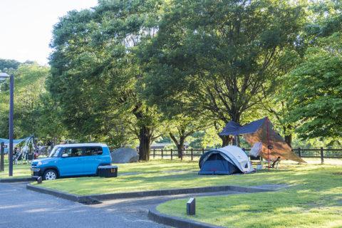 夕方のキャンプサイト