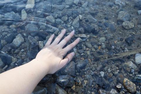 大芦川に手を入れてみた
