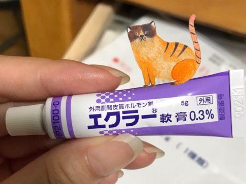 軟膏 エクラー エクラー軟膏0.3%の薬効分類・効果・副作用|根拠に基づく医療情報データベース【今日の臨床サポート】
