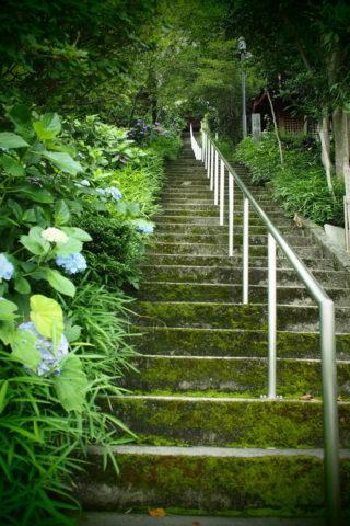 観音堂への階段