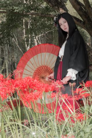彼岸花と和傘とポートレート