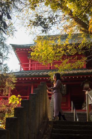夕日が差し込む神社の階段