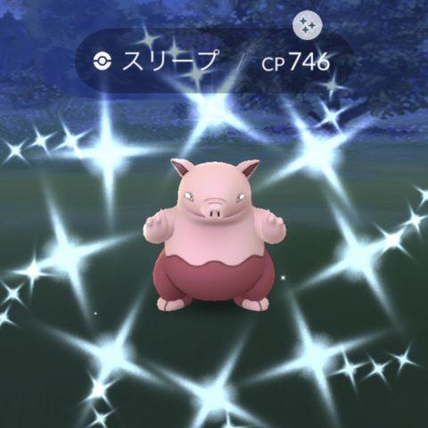 ピンクのスリープ