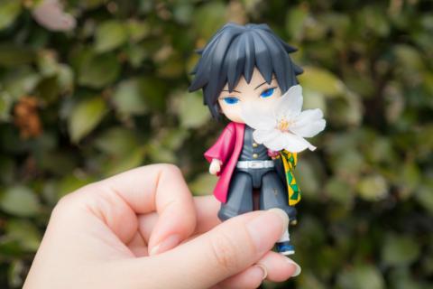 桜の花と義勇さん
