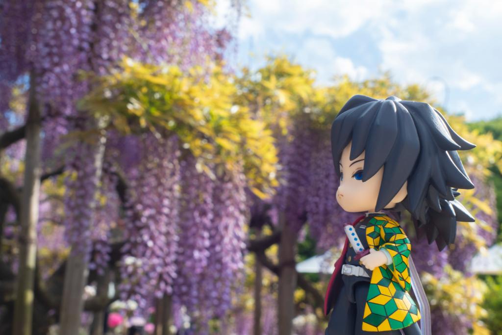 義勇さんと藤の花