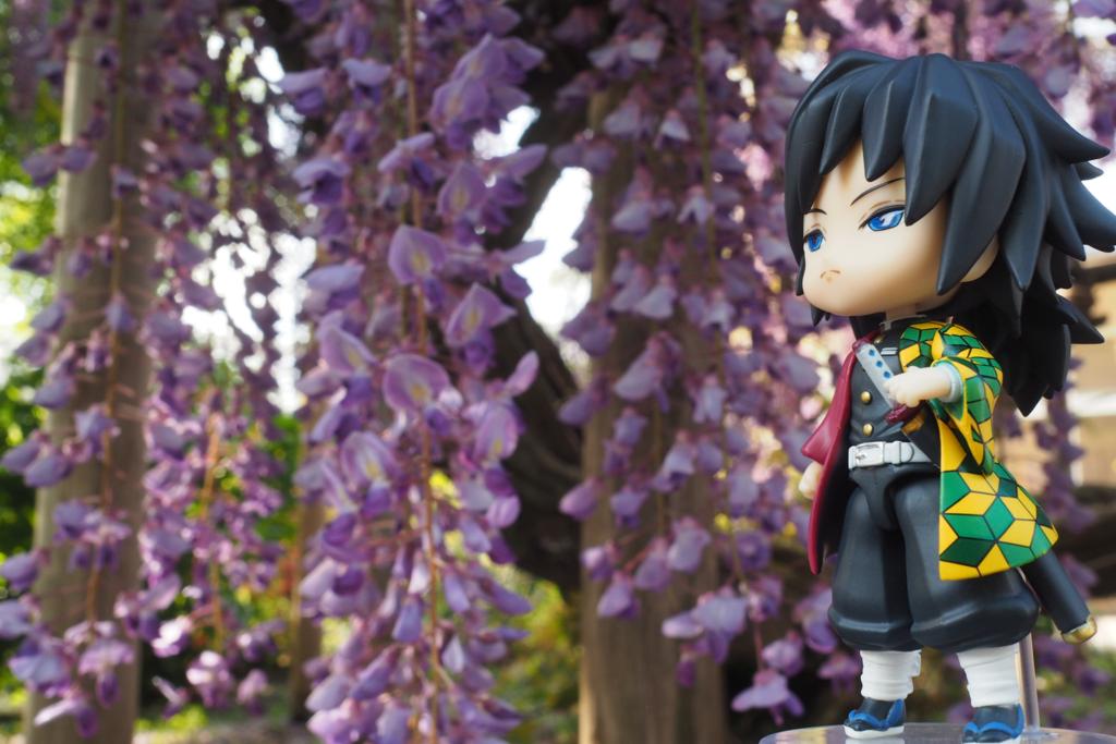 藤の花と富岡義勇